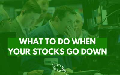 What to do when your stocks go down
